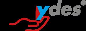 dailydes logo neu